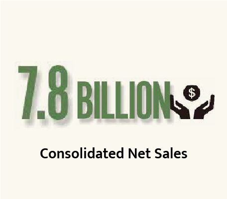 Consolidated Net Sales